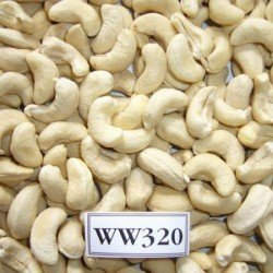 Cashews (320 no.)