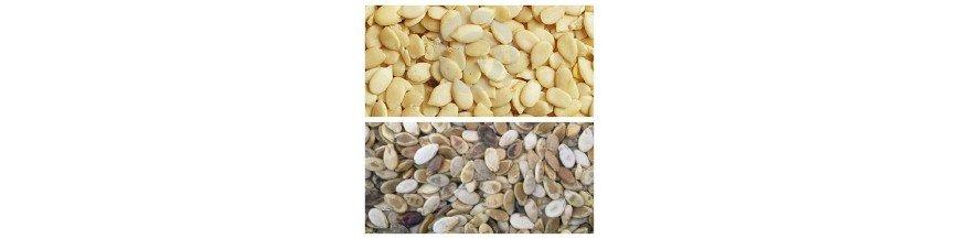 Musk Melon seeds (Magaz)